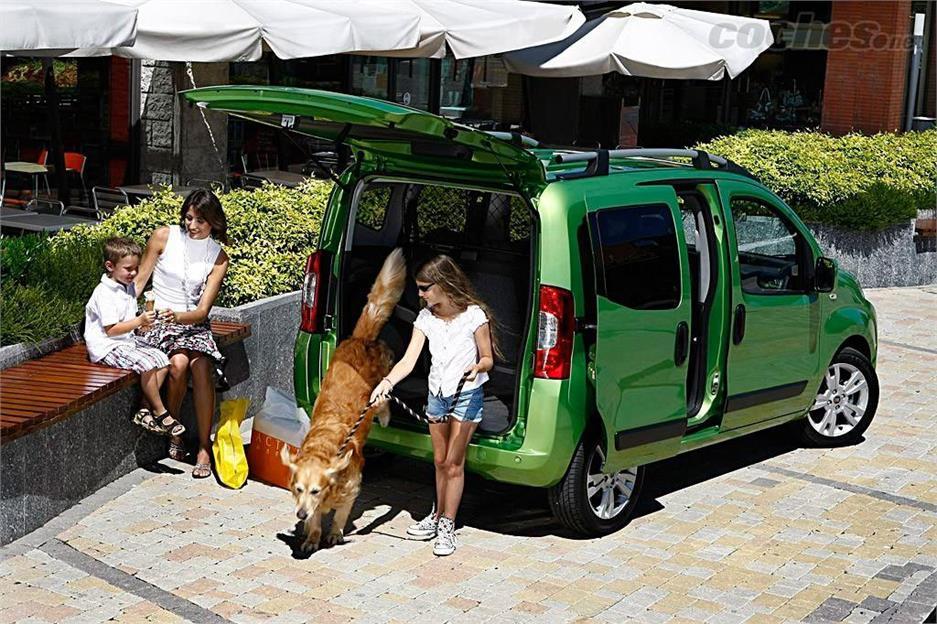 ¿Viajas con animales?