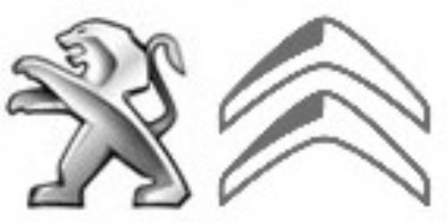 DUCAL MOTOR SL Logo